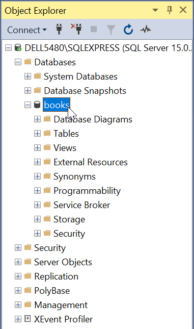 Microsoft SQL Server - Microsoft SQL Server Management Studio - Object Explorer - books Database